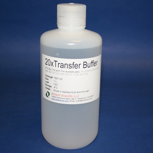 20xTransfer Buffer for Bis-Tris Gels (1 L)