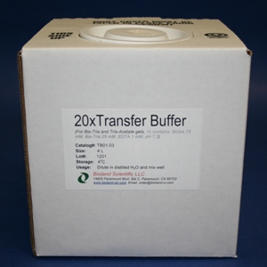 20xTransfer Buffer for Bis-Tris Gels (4 L)