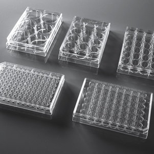 NEST 24-well Cell Culture Plate (Sterile, TC, 1/pk, 100/cs)